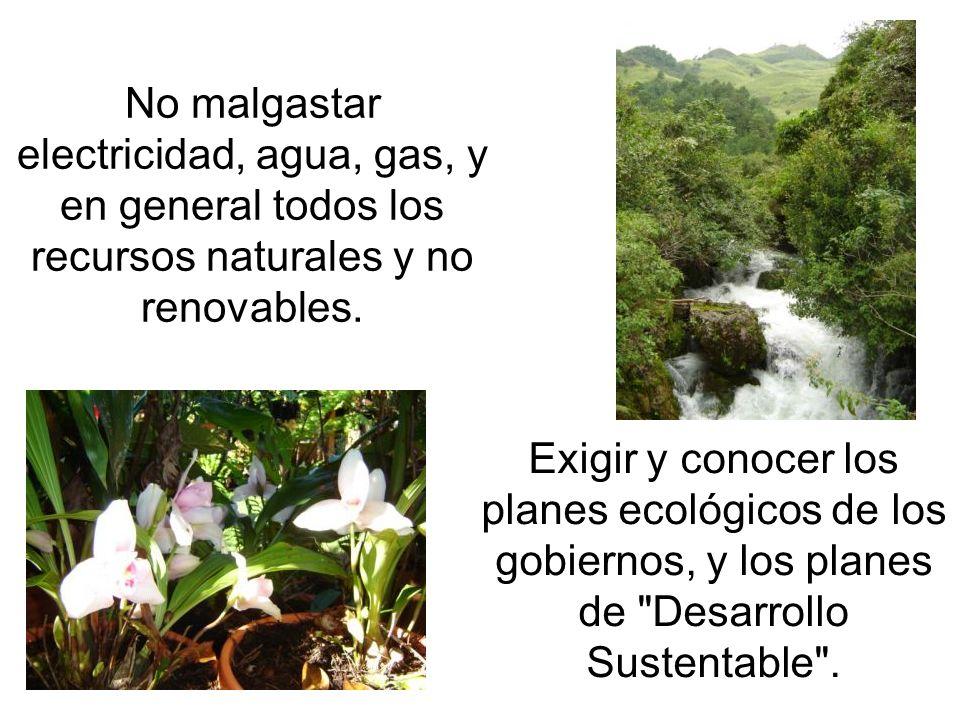 No malgastar electricidad, agua, gas, y en general todos los recursos naturales y no renovables. Exigir y conocer los planes ecológicos de los gobiern