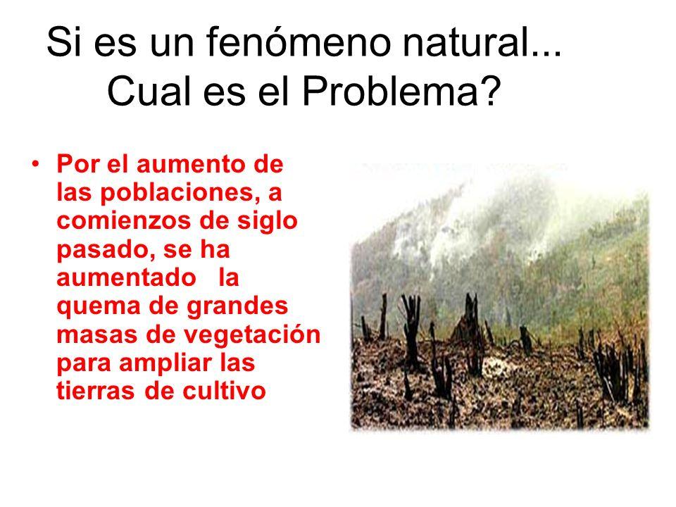 Si es un fenómeno natural... Cual es el Problema? Por el aumento de las poblaciones, a comienzos de siglo pasado, se ha aumentado la quema de grandes