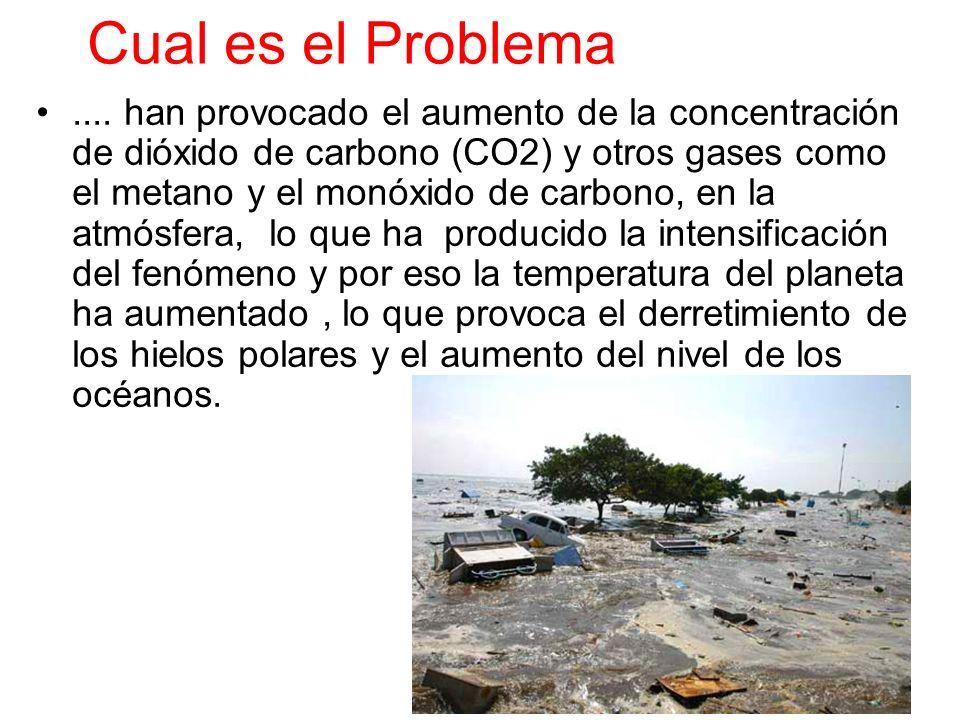 Cual es el Problema.... han provocado el aumento de la concentración de dióxido de carbono (CO2) y otros gases como el metano y el monóxido de carbono