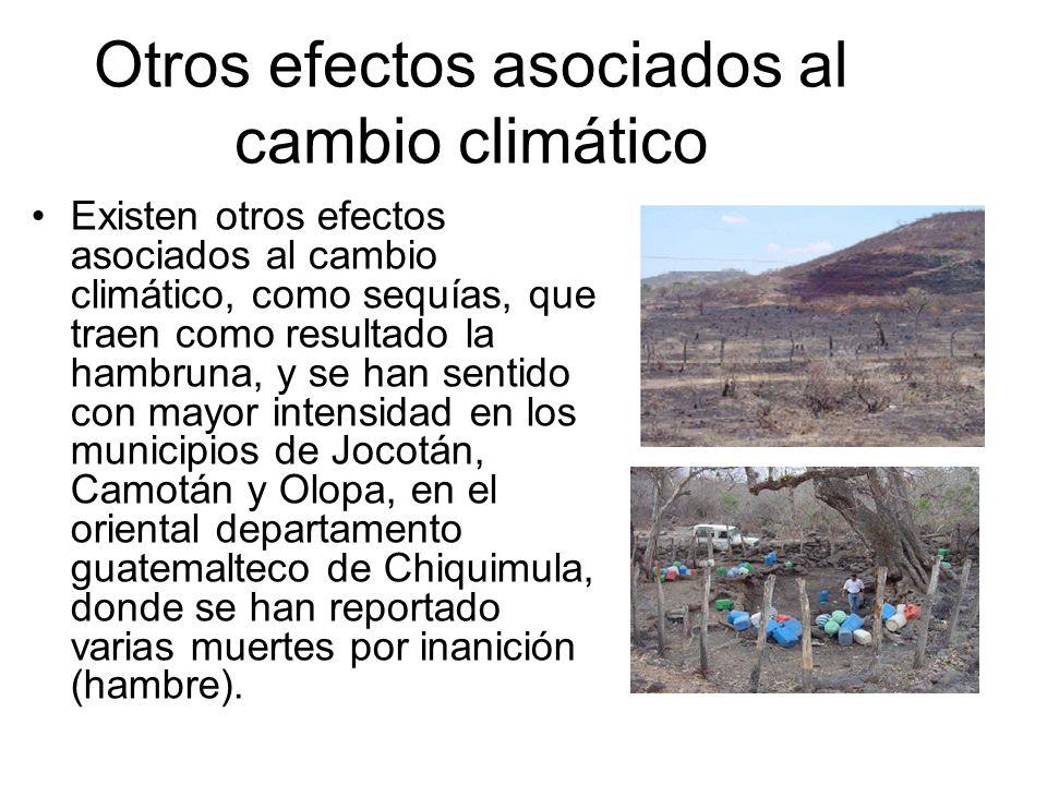 Otros efectos asociados al cambio climático Existen otros efectos asociados al cambio climático, como sequías, que traen como resultado la hambruna, y