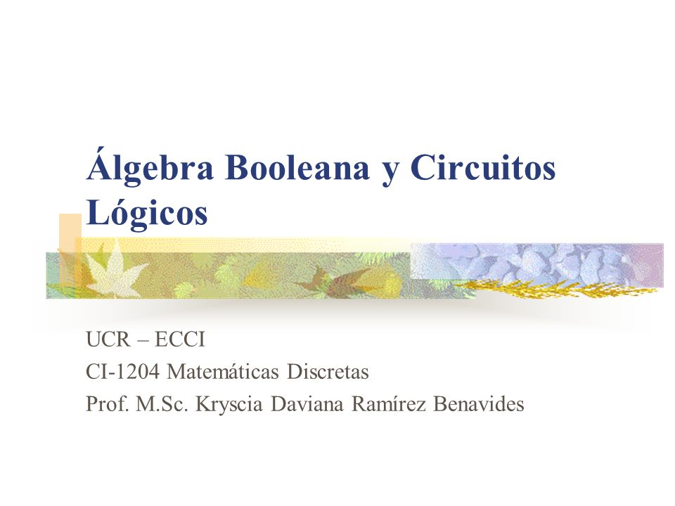 Álgebra Booleana y Circuitos Lógicos UCR – ECCI CI-1204 Matemáticas Discretas Prof. M.Sc. Kryscia Daviana Ramírez Benavides