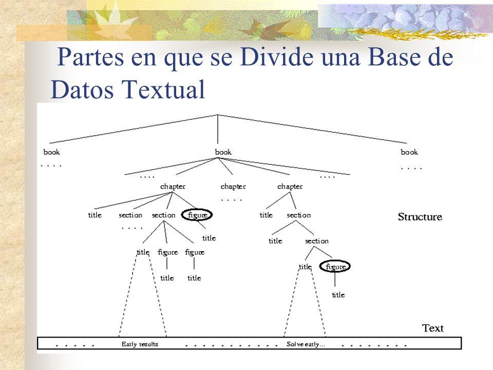 Partes en que se Divide una Base de Datos Textual