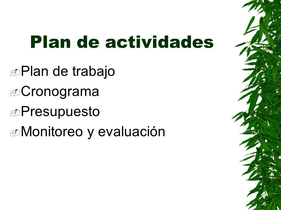 Plan de actividades Plan de trabajo Cronograma Presupuesto Monitoreo y evaluación