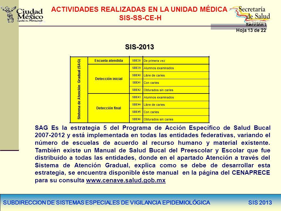 SUBDIRECCION DE SISTEMAS ESPECIALES DE VIGILANCIA EPIDEMIOLÓGICA SIS 2013 SIS-2013 SAG Es la estrategia 5 del Programa de Acción Específico de Salud B