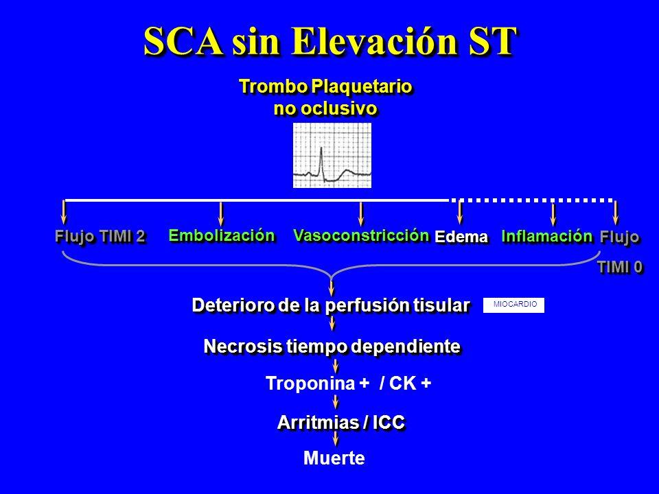 SCA sin Elevación ST Trombo Plaquetario no oclusivo EmbolizaciónEmbolización Necrosis tiempo dependiente Flujo TIMI 2 VasoconstricciónVasoconstricción