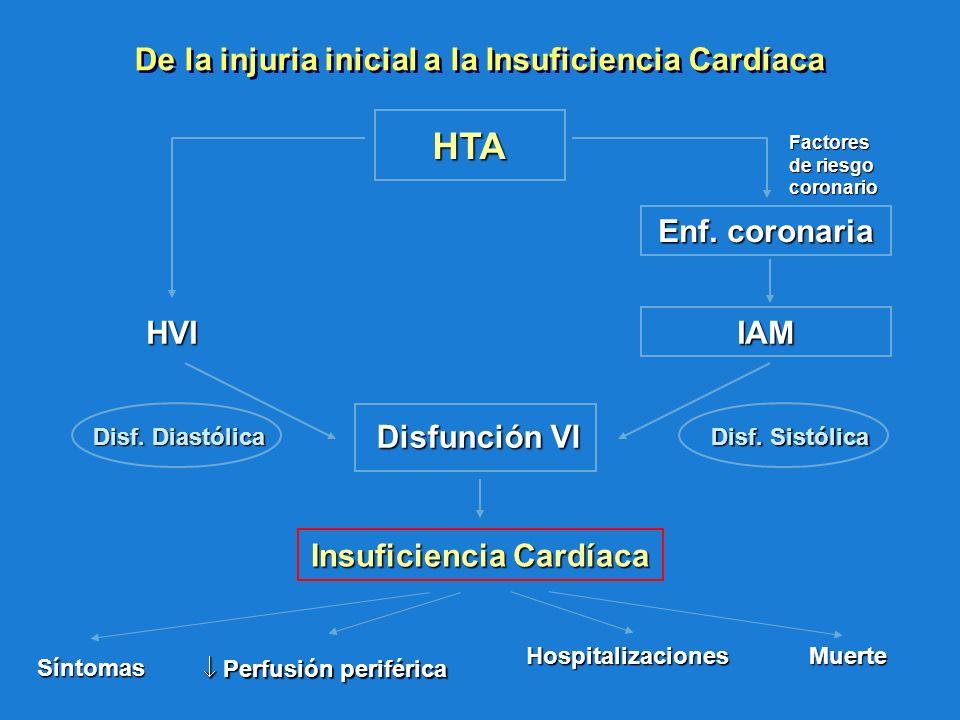 De la injuria inicial a la Insuficiencia Cardíaca HTA Insuficiencia Cardíaca IAM Disf. Sistólica Disf. Diastólica Síntomas Perfusión periférica Perfus