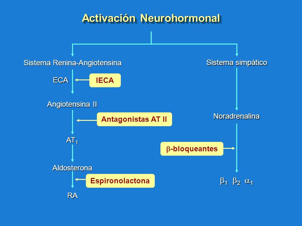 Antagonistas AT IIIECA Sistema Renina-Angiotensina AT 1 Angiotensina II Aldosterona RA Sistema simpático 1 2 1 1 2 1 Noradrenalina ECA Activación Neur