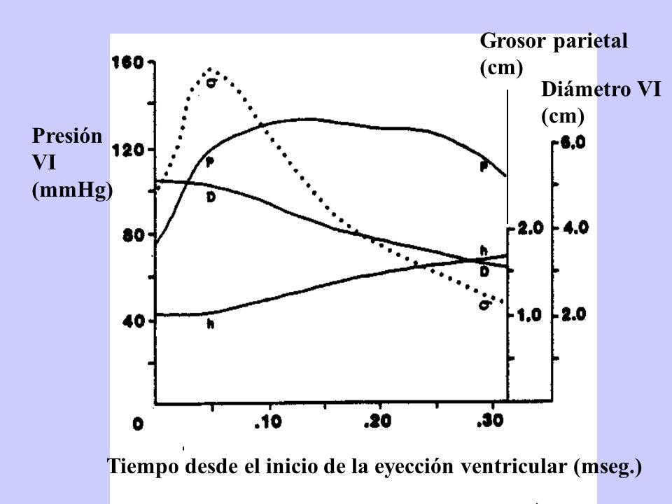 Tiempo desde el inicio de la eyección ventricular (mseg.) Grosor parietal (cm) Diámetro VI (cm) Presión VI (mmHg)