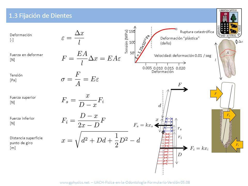1.3 Fijación de Dientes www.gphysics.net – UACH-Fisica-en-la-Odontologia-Formulario-Versión 05.08 Deformación [-] Fuerza en deformar [N] Tensión [Pa]