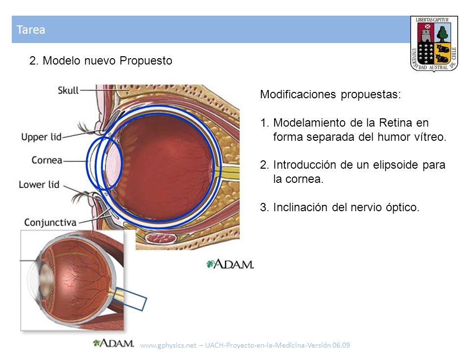 Tarea www.gphysics.net – UACH-Proyecto-en-la-Medicina-Versión 06.09 2. Modelo nuevo Propuesto Modificaciones propuestas: 1. Modelamiento de la Retina