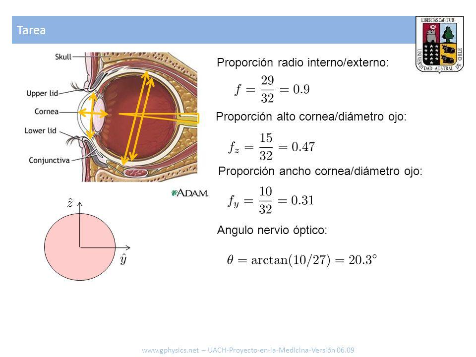 Tarea www.gphysics.net – UACH-Proyecto-en-la-Medicina-Versión 06.09 Proporción radio interno/externo: Proporción alto cornea/diámetro ojo: Proporción