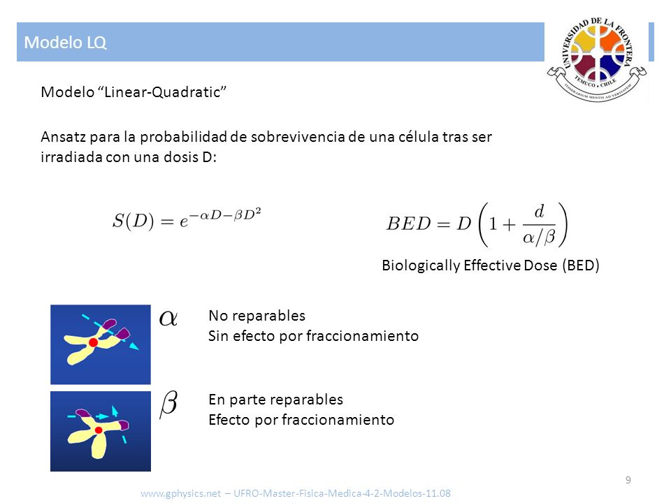 Modelo LQ 9 www.gphysics.net – UFRO-Master-Fisica-Medica-4-2-Modelos-11.08 Ansatz para la probabilidad de sobrevivencia de una célula tras ser irradiada con una dosis D: No reparables Sin efecto por fraccionamiento En parte reparables Efecto por fraccionamiento Modelo Linear-Quadratic Biologically Effective Dose (BED)