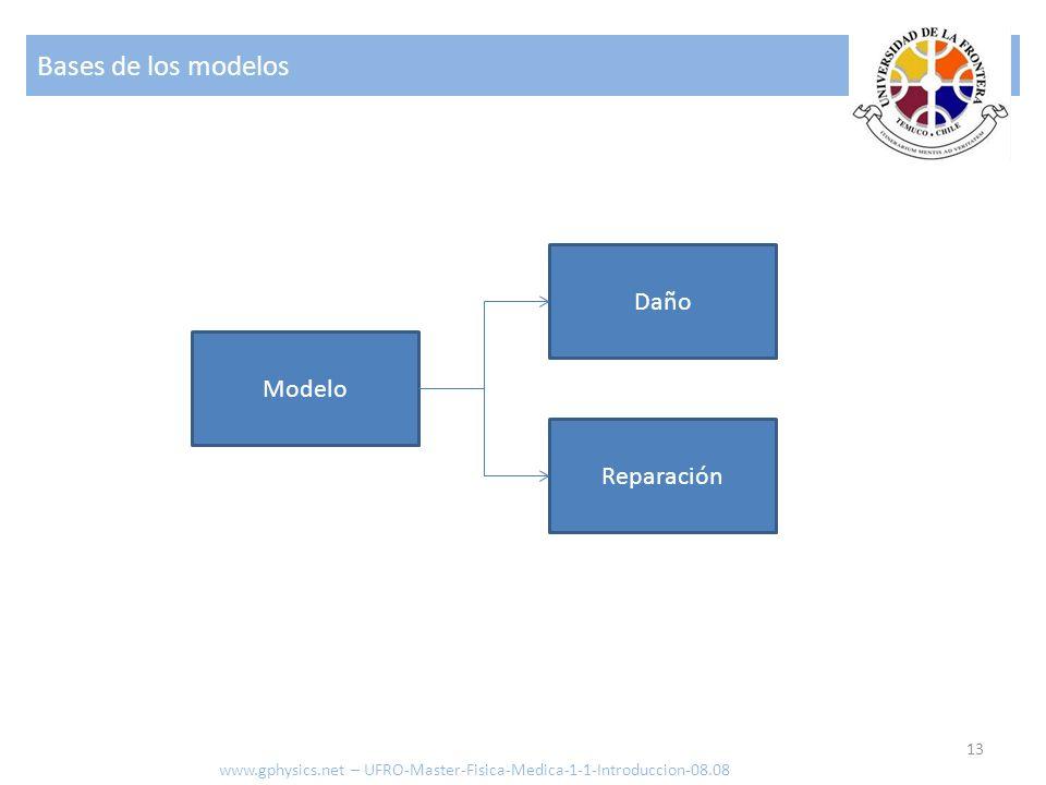 Bases de los modelos 13 www.gphysics.net – UFRO-Master-Fisica-Medica-1-1-Introduccion-08.08 Modelo Daño Reparación