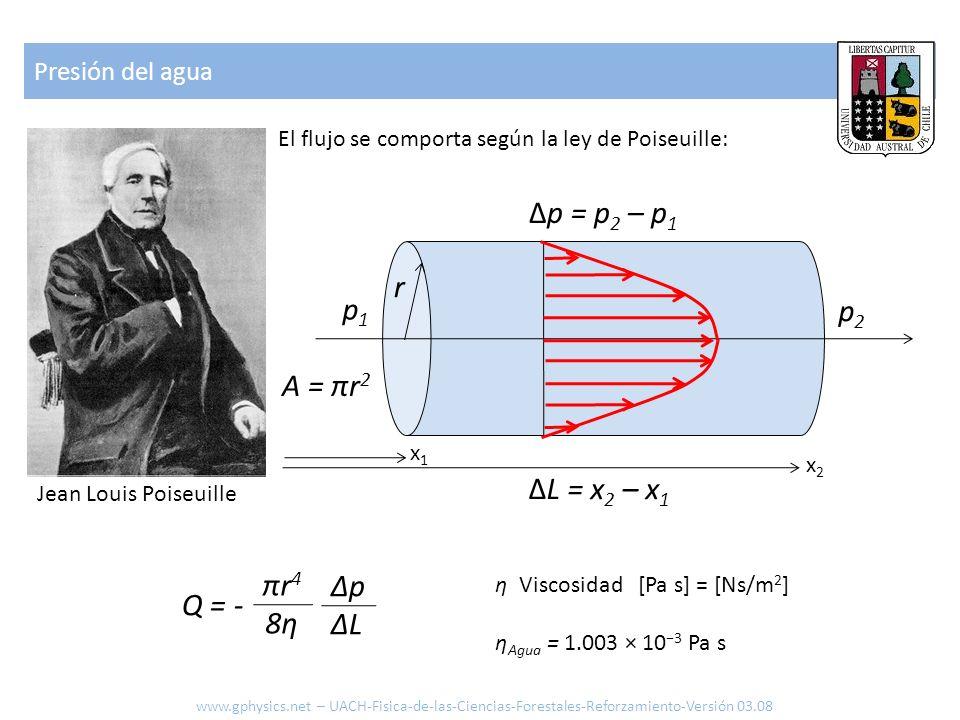 Presión del agua El flujo se comporta según la ley de Poiseuille: p1p1 p2p2 ΔL = x 2 – x 1 r A = πr 2 Q = - πr48ηπr48η ΔpΔLΔpΔL Δp = p 2 – p 1 x2x2 x1