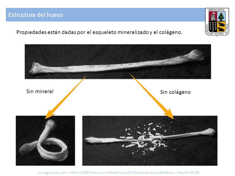 Forma de uso del hueso Distintos tipos de fuerzas a las que están expuestos los huesos ComprimirTensionarTorsiónDoblar www.gphysics.net – UACH-2008-Fisica-en-la-Mediciona-02-Materiales-en-la-Medicina – Versión 03.09
