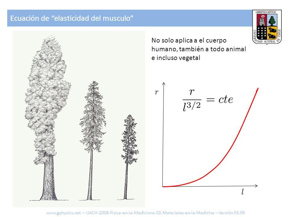 Ecuación de elasticidad del musculo Diámetro [m] Altura [m] Limite de quiebre Pendiente 3/2 Incluso los sistemas se han optimizado (selección natural) de modo de que el limite de quiebre tiene la misma relación.