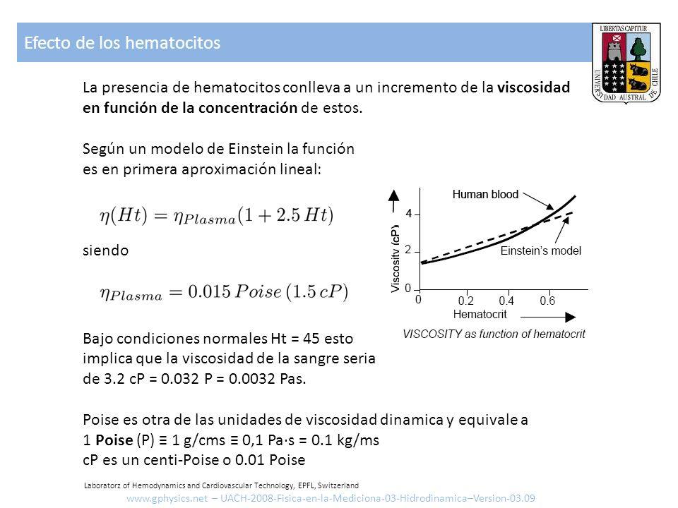La presencia de hematocitos conlleva a un incremento de la viscosidad en función de la concentración de estos. Según un modelo de Einstein la función