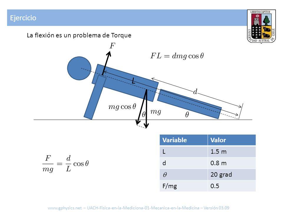 Ejercicio La flexión es un problema de Torque L VariableValor L1.5 m d0.8 m 20 grad F/mg0.5 www.gphysics.net – UACH-Fisica-en-la-Mediciona-01-Mecanica