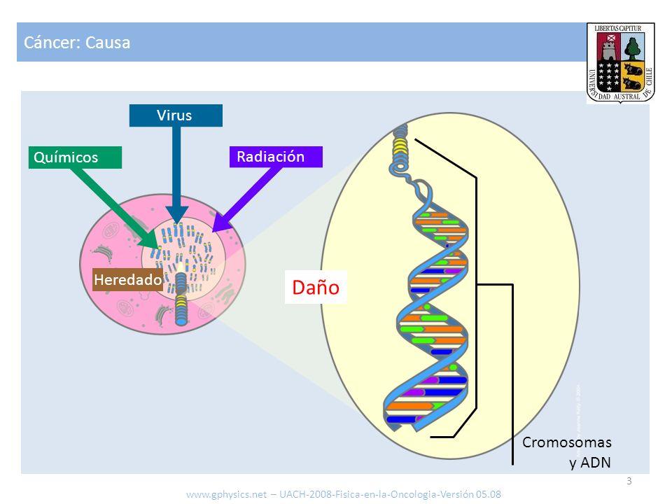 Cáncer: Causa 3 www.gphysics.net – UACH-2008-Fisica-en-la-Oncologia-Versión 05.08 Heredado Radiación Químicos Virus Cromosomas y ADN Daño