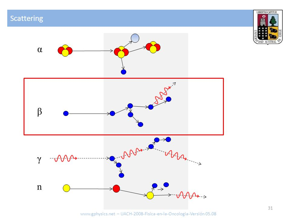Scattering 31 www.gphysics.net – UACH-2008-Fisica-en-la-Oncologia-Versión 05.08 α β γ n