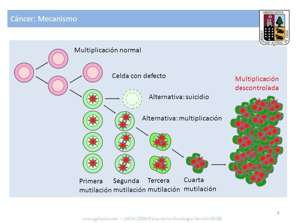 Cáncer: Mecanismo 4 www.gphysics.net – UACH-2008-Fisica-en-la-Oncologia-Versión 05.08 Multiplicación normal Celda con defecto Alternativa: suicidio Al