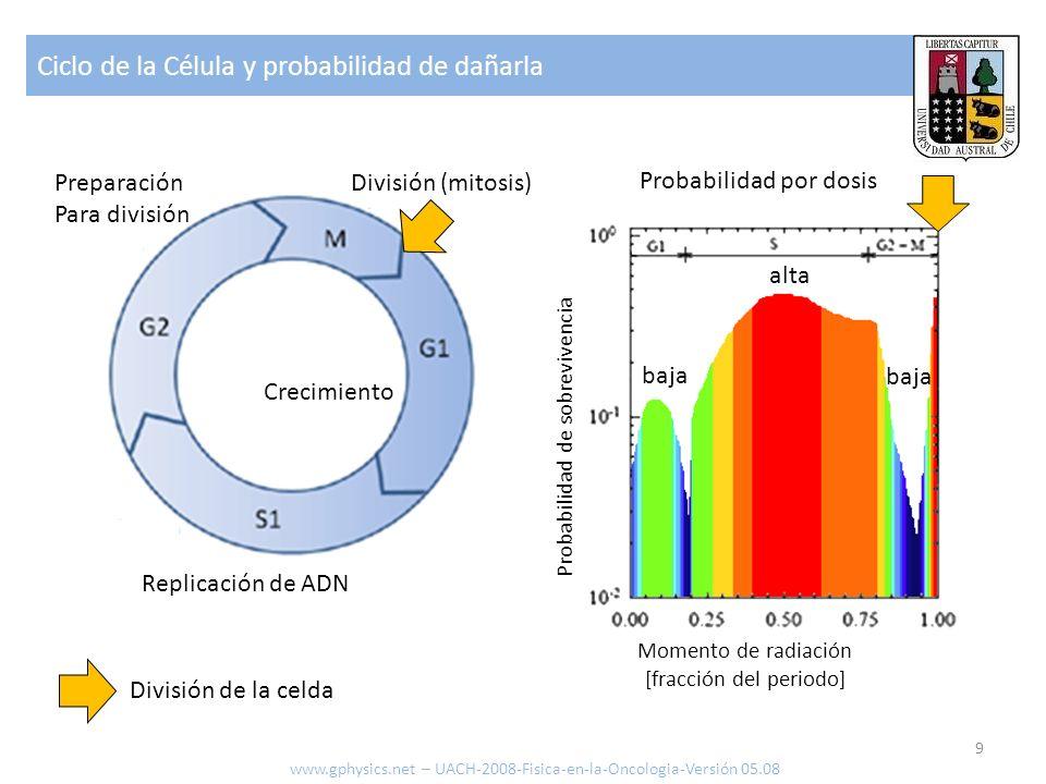 Ciclo de la Célula y probabilidad de dañarla 9 www.gphysics.net – UACH-2008-Fisica-en-la-Oncologia-Versión 05.08 Replicación de ADN Preparación Para d