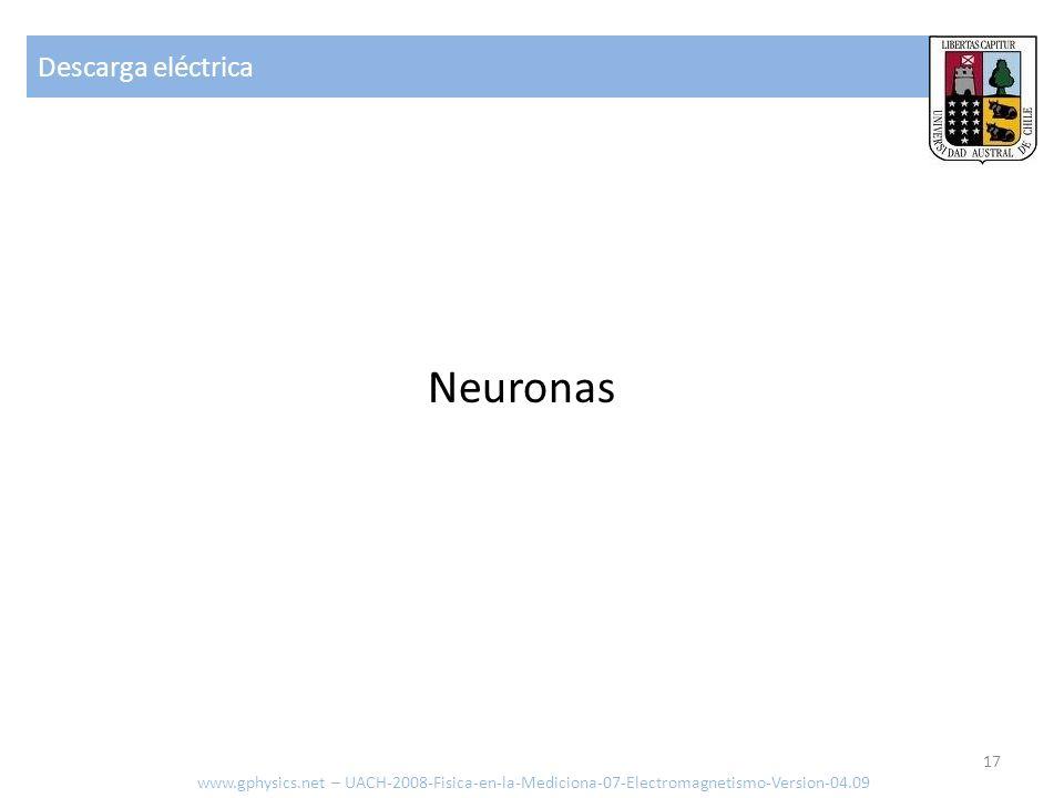 Descarga eléctrica www.gphysics.net – UACH-2008-Fisica-en-la-Mediciona-07-Electromagnetismo-Version-04.09 17 Neuronas