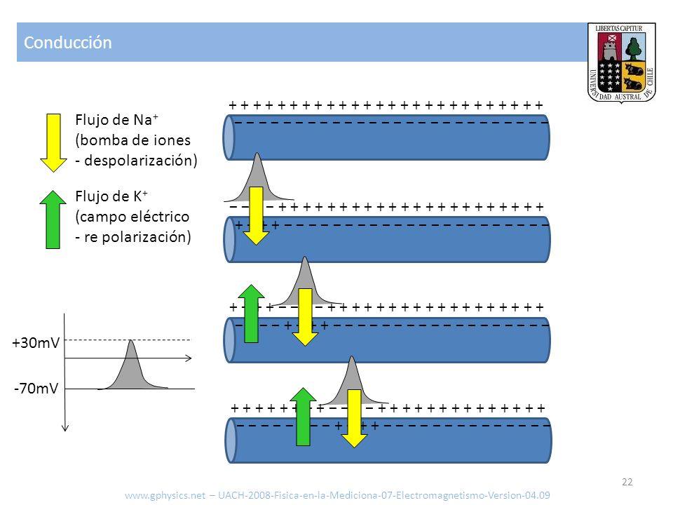 Conducción www.gphysics.net – UACH-2008-Fisica-en-la-Mediciona-07-Electromagnetismo-Version-04.09 22 + + + + + + + + + + + + + + + + + + + + + + + + +