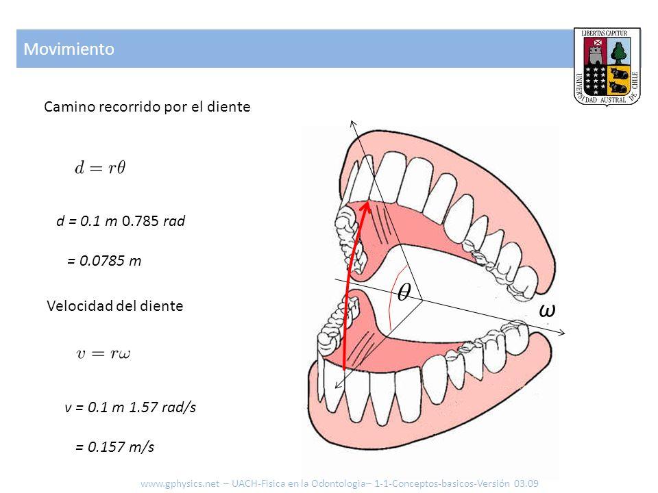 Velocidad del diente Movimiento ω d = 0.1 m 0.785 rad = 0.0785 m Camino recorrido por el diente v = 0.1 m 1.57 rad/s = 0.157 m/s www.gphysics.net – UA