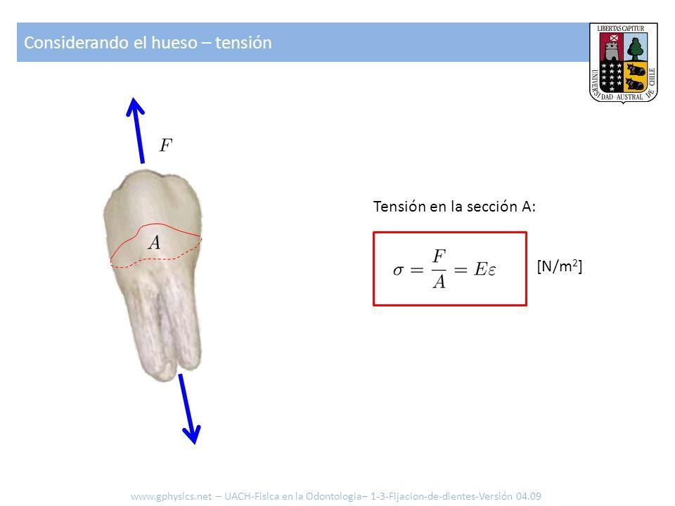 Considerando el hueso – tensión Tensión en la sección A: [N/m 2 ] www.gphysics.net – UACH-Fisica en la Odontologia– 1-3-Fijacion-de-dientes-Versión 04