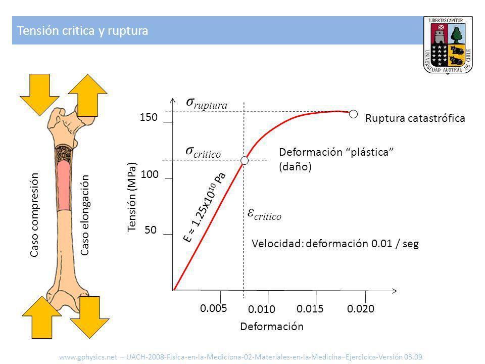 Tensión critica y ruptura 0.005 0.010 0.015 0.020 Deformación 150 100 50 Tensión (MPa) Velocidad: deformación 0.01 / seg Deformación plástica (daño) Ruptura catastrófica E 1.25x10 10 Pa www.gphysics.net – UACH-2008-Fisica-en-la-Mediciona-02-Materiales-en-la-Medicina–Ejercicios-Versión 03.09 Caso compresión Caso elongación σ critico σ ruptura ε critico