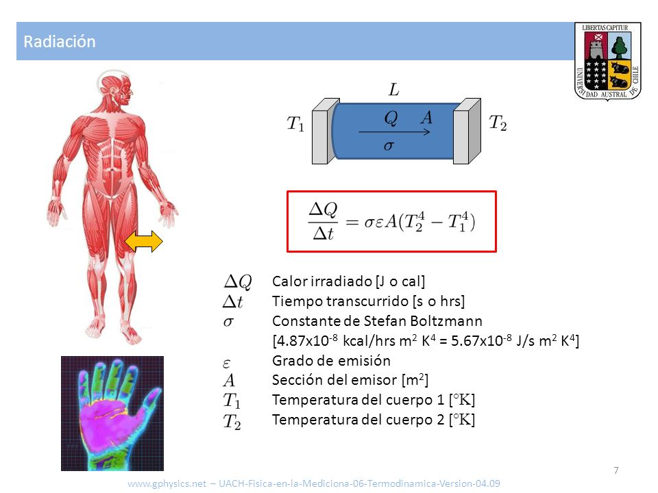 Radiación www.gphysics.net – UACH-Fisica-en-la-Mediciona-06-Termodinamica-Version-04.09 7 Calor irradiado [J o cal] Tiempo transcurrido [s o hrs] Cons