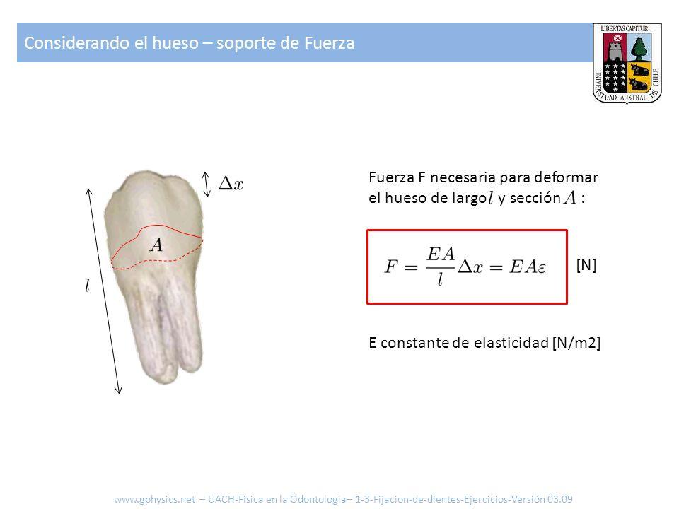 Considerando el hueso – soporte de Fuerza Fuerza F necesaria para deformar el hueso de largo y sección : E constante de elasticidad [N/m2] [N] www.gph