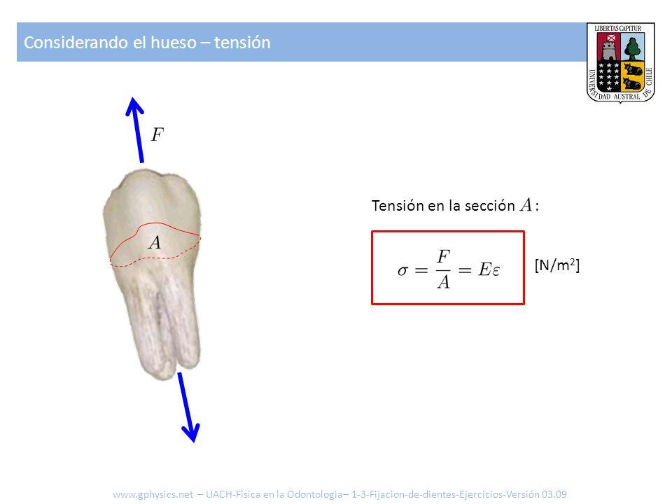 Considerando el hueso – tensión Tensión en la sección : [N/m 2 ] www.gphysics.net – UACH-Fisica en la Odontologia– 1-3-Fijacion-de-dientes-Ejercicios-