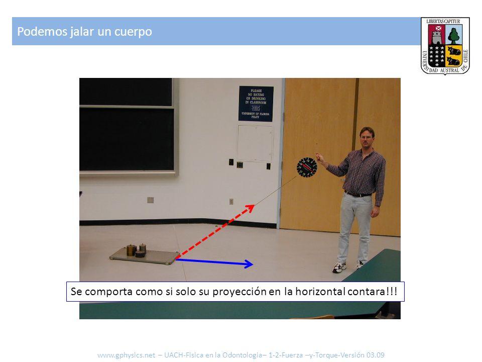 Podemos jalar un cuerpo Se comporta como si solo su proyección en la horizontal contara!!! www.gphysics.net – UACH-Fisica en la Odontologia– 1-2-Fuerz