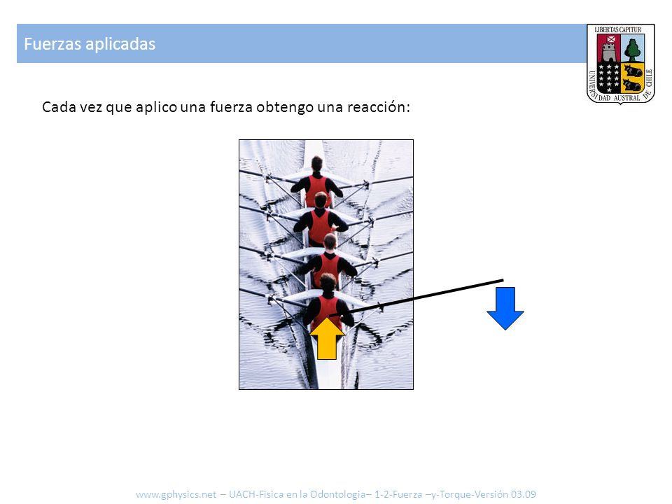 Fuerzas aplicadas Cada vez que aplico una fuerza obtengo una reacción: www.gphysics.net – UACH-Fisica en la Odontologia– 1-2-Fuerza –y-Torque-Versión