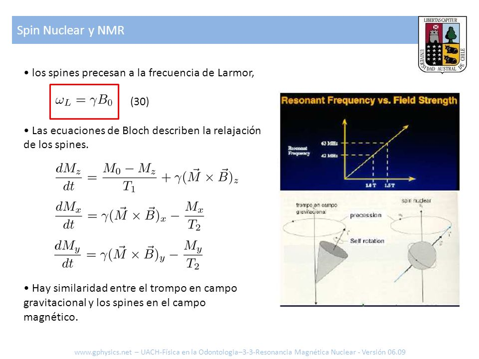 Spin Nuclear y NMR www.gphysics.net – UACH-Física en la Odontologia–3-3-Resonancia Magnética Nuclear - Versión 06.09 los spines precesan a la frecuenc