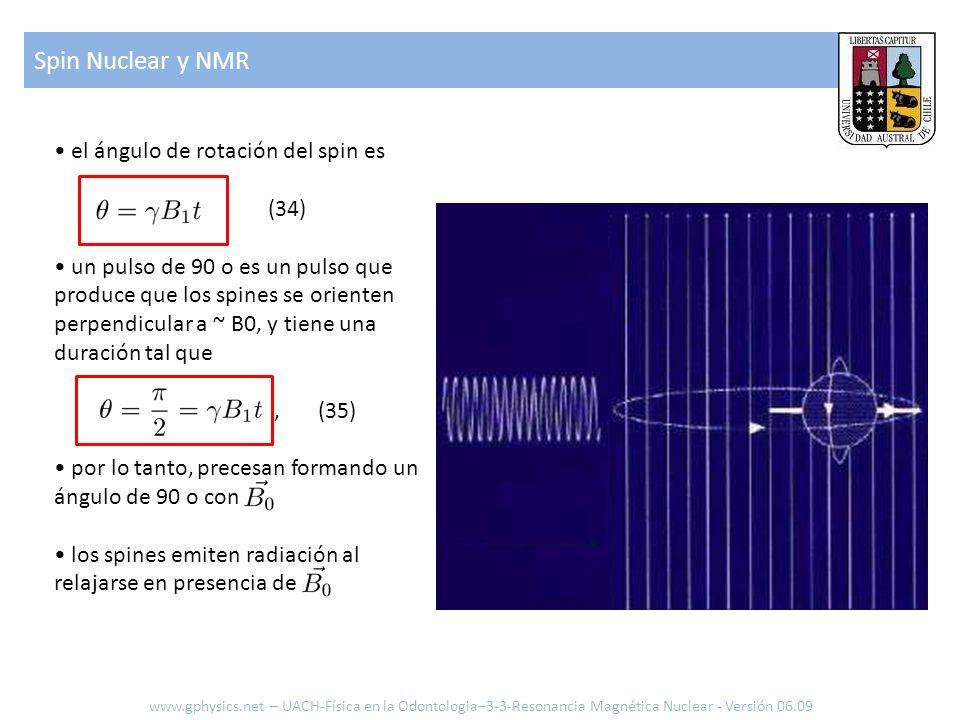 el ángulo de rotación del spin es (34) un pulso de 90 o es un pulso que produce que los spines se orienten perpendicular a ~ B0, y tiene una duración