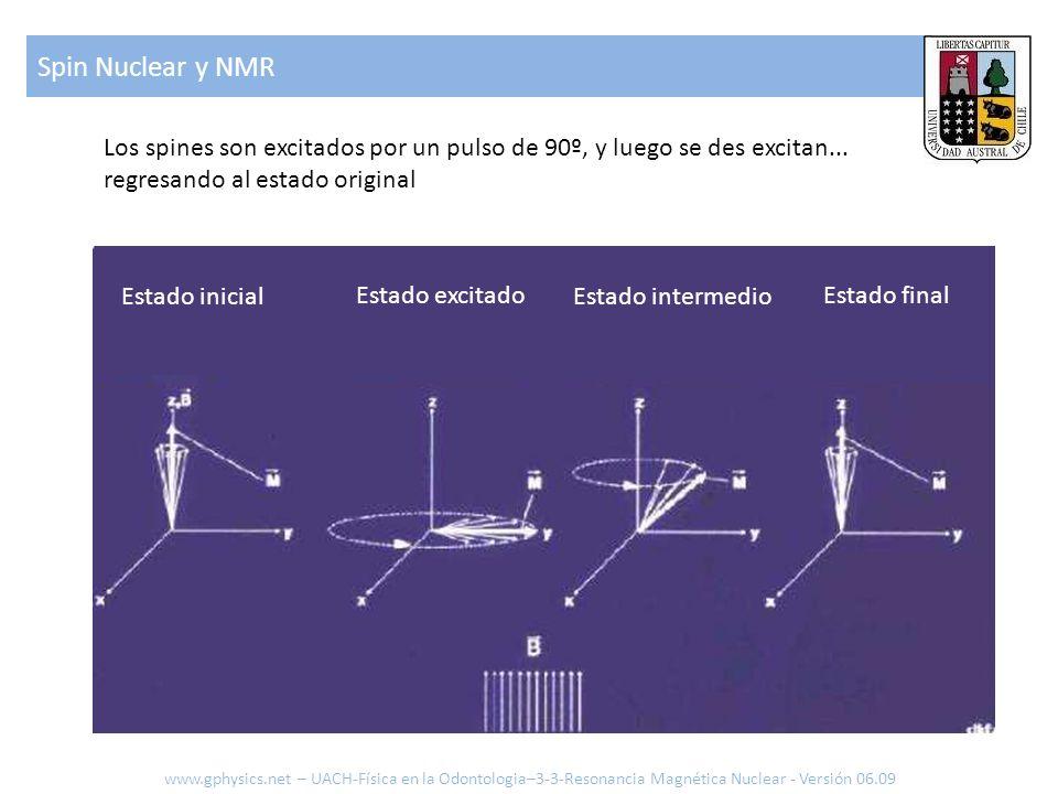 Spin Nuclear y NMR www.gphysics.net – UACH-Física en la Odontologia–3-3-Resonancia Magnética Nuclear - Versión 06.09 Los spines son excitados por un p