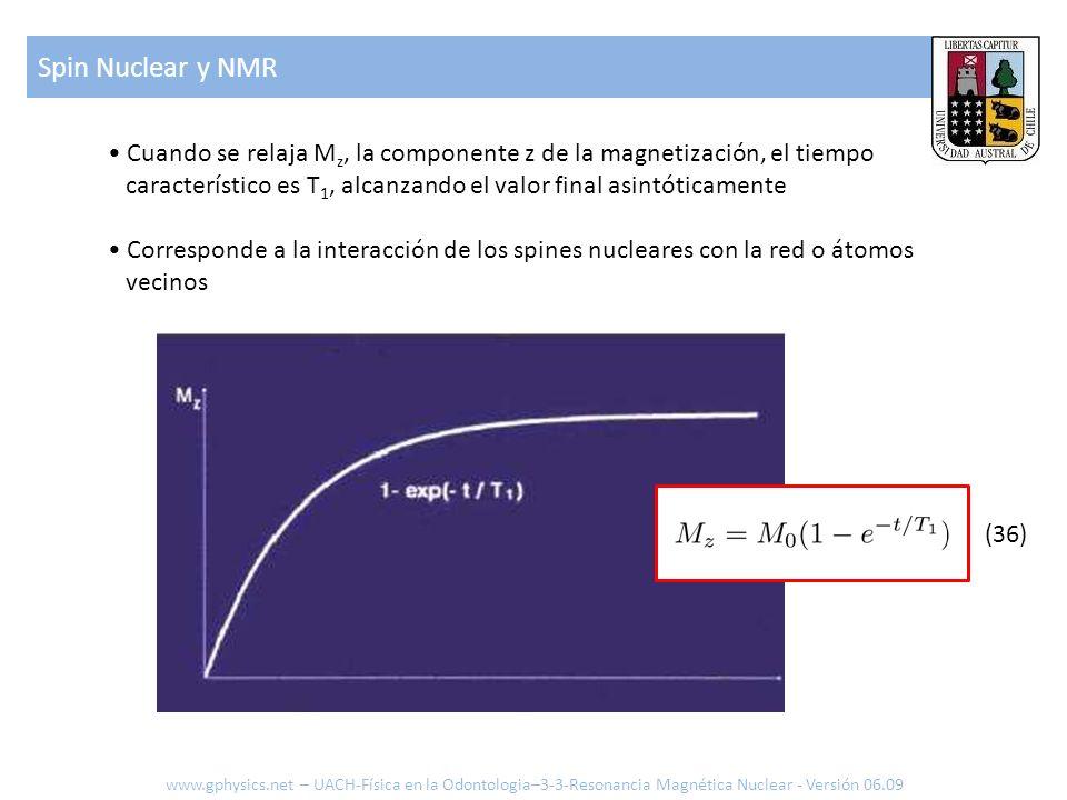 Spin Nuclear y NMR www.gphysics.net – UACH-Física en la Odontologia–3-3-Resonancia Magnética Nuclear - Versión 06.09 Cuando se relaja M z, la componen