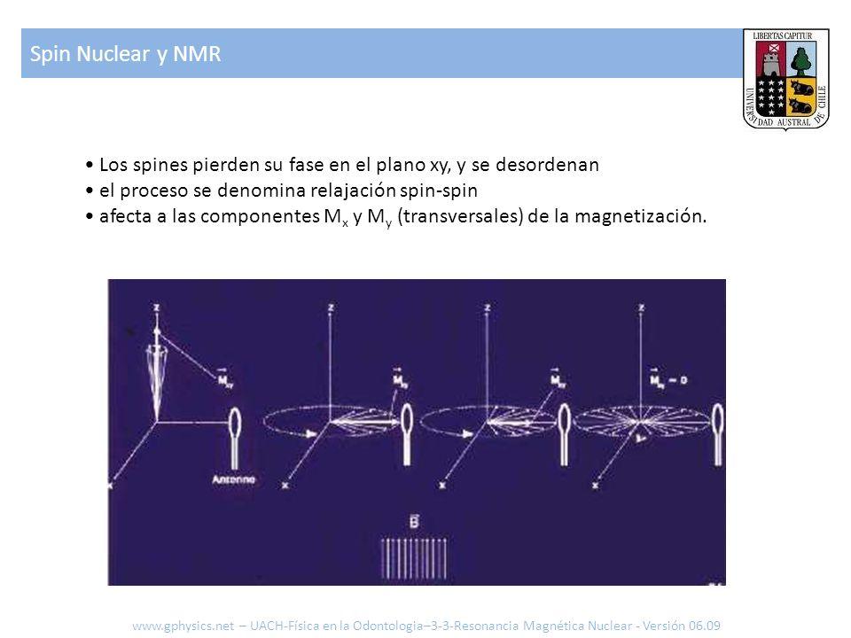 Spin Nuclear y NMR www.gphysics.net – UACH-Física en la Odontologia–3-3-Resonancia Magnética Nuclear - Versión 06.09 Los spines pierden su fase en el