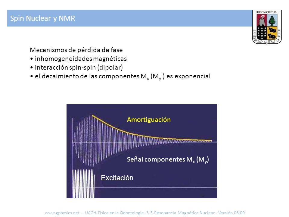 Spin Nuclear y NMR www.gphysics.net – UACH-Física en la Odontologia–3-3-Resonancia Magnética Nuclear - Versión 06.09 Mecanismos de pérdida de fase inh