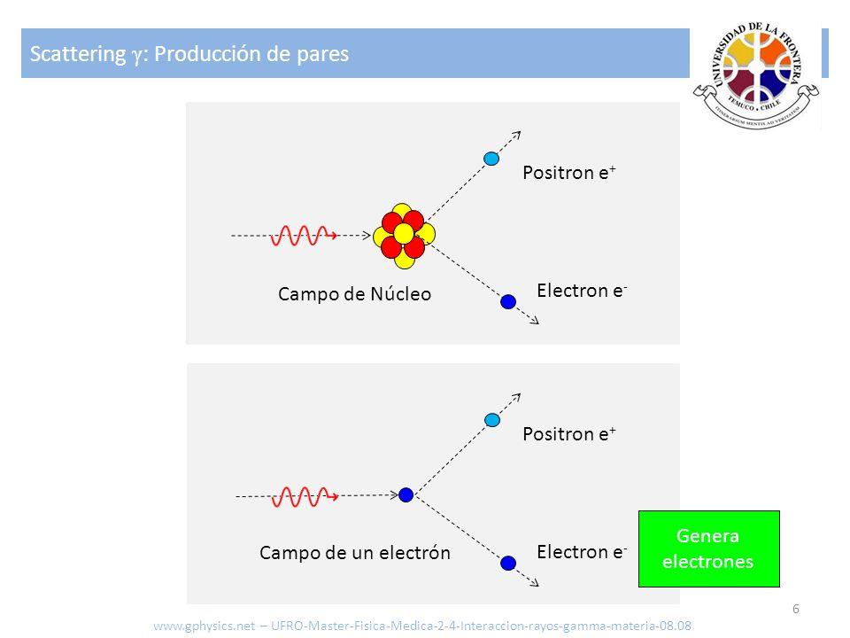 Scattering γ : Producción de pares 6 Campo de Núcleo Electron e - Positron e + Campo de un electrón Electron e - Positron e + Genera electrones www.gp