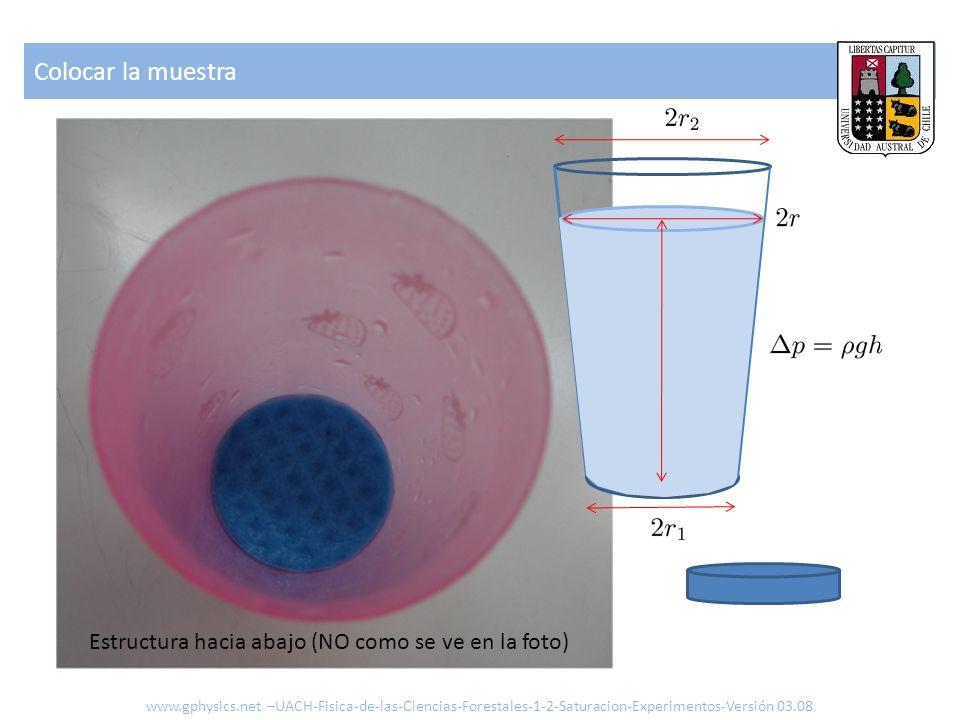 Colocar la muestra www.gphysics.net –UACH-Fisica-de-las-Ciencias-Forestales-1-2-Saturacion-Experimentos-Versión 03.08 Estructura hacia abajo (NO como