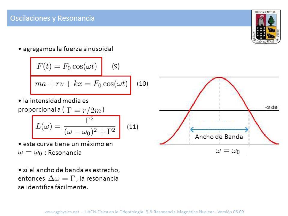 agregamos la fuerza sinusoidal (9) (10) la intensidad media es proporcional a ( ) (11) esta curva tiene un máximo en : Resonancia si el ancho de banda