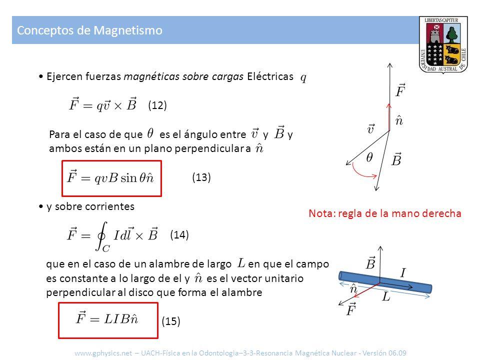 Conceptos de Magnetismo www.gphysics.net – UACH-Física en la Odontologia–3-3-Resonancia Magnética Nuclear - Versión 06.09 Ejercen fuerzas magnéticas s