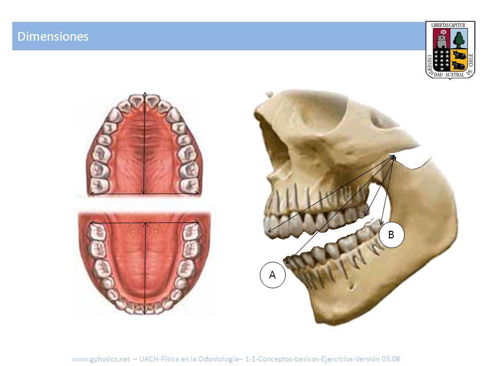 Dimensiones www.gphysics.net – UACH-Fisica en la Odontologia– 1-1-Conceptos-basicos-Ejercicios-Versión 03.08 A B