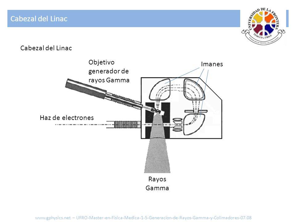 Cabezal del Linac www.gphysics.net – UFRO-Master-en-Fisica-Medica-1-5-Generacion-de-Rayos-Gamma-y-Colimadores-07.08 Cabezal del Linac Imanes Objetivo