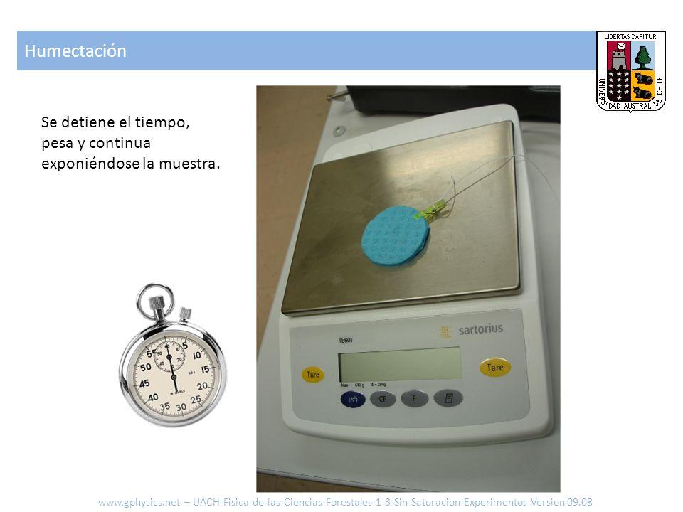 Humectación www.gphysics.net – UACH-Fisica-de-las-Ciencias-Forestales-1-3-Sin-Saturacion-Experimentos-Version 09.08 Se detiene el tiempo, pesa y conti