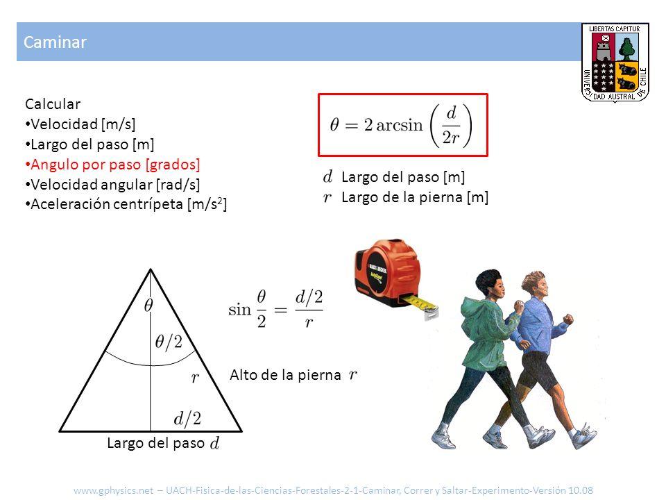Caminar Calcular Velocidad [m/s] Largo del paso [m] Angulo por paso [grados] Velocidad angular [rad/s] Aceleración centrípeta [m/s 2 ] Alto de la pier